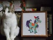 кошка крысаловка